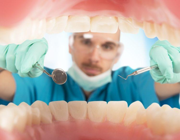 Dentist check